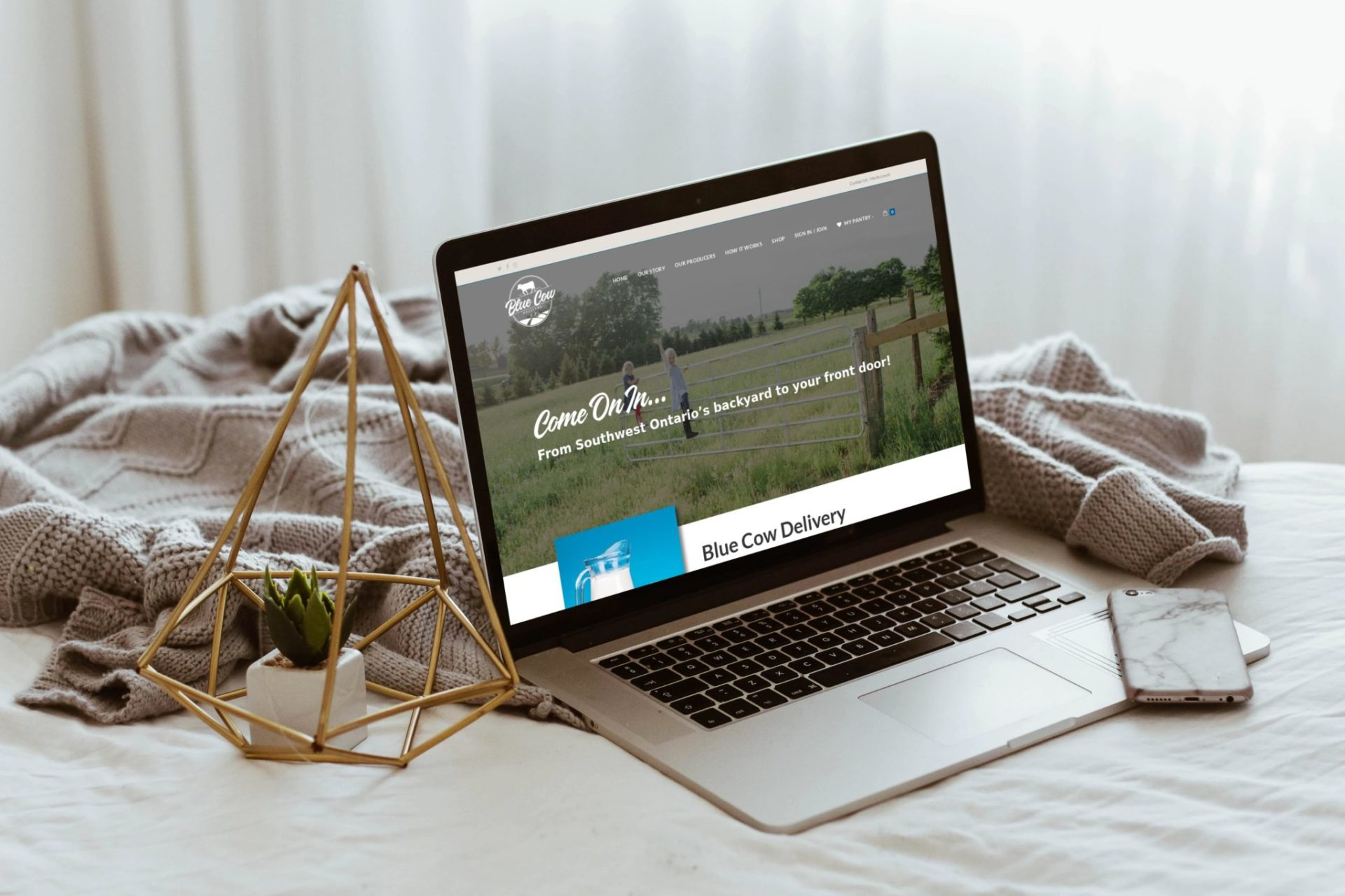 Blue Cow Delivery – Website